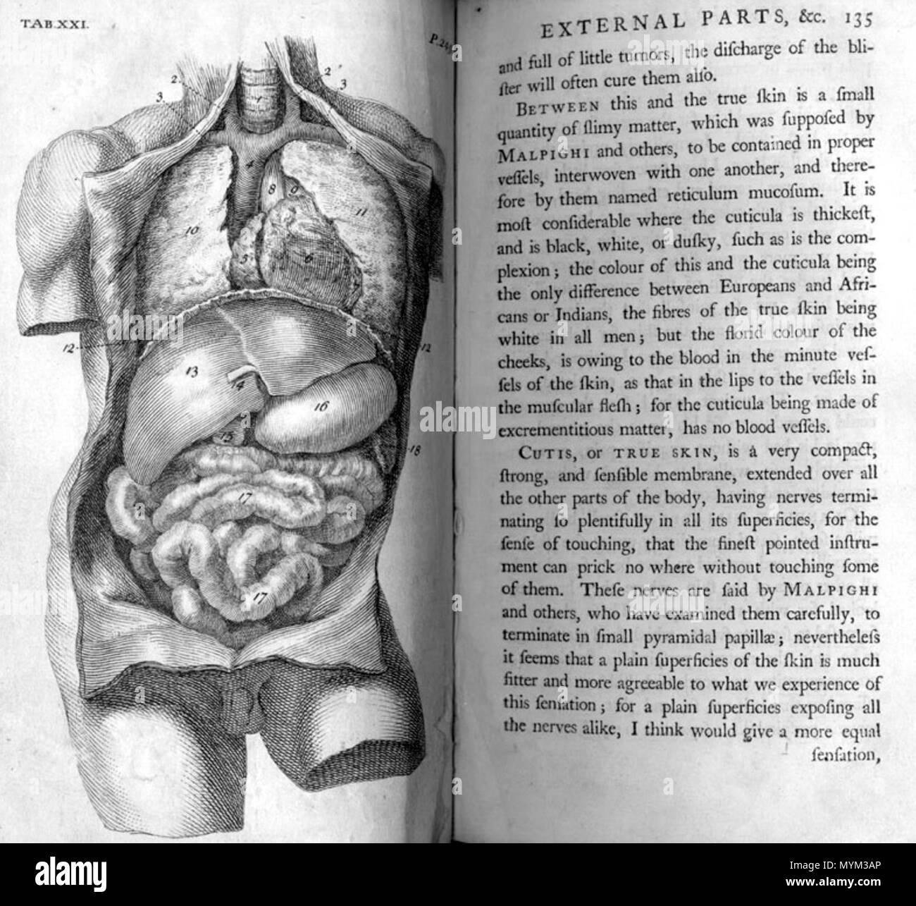 William Cheselden (1688-1752): die Anatomie des menschlichen Körpers ...