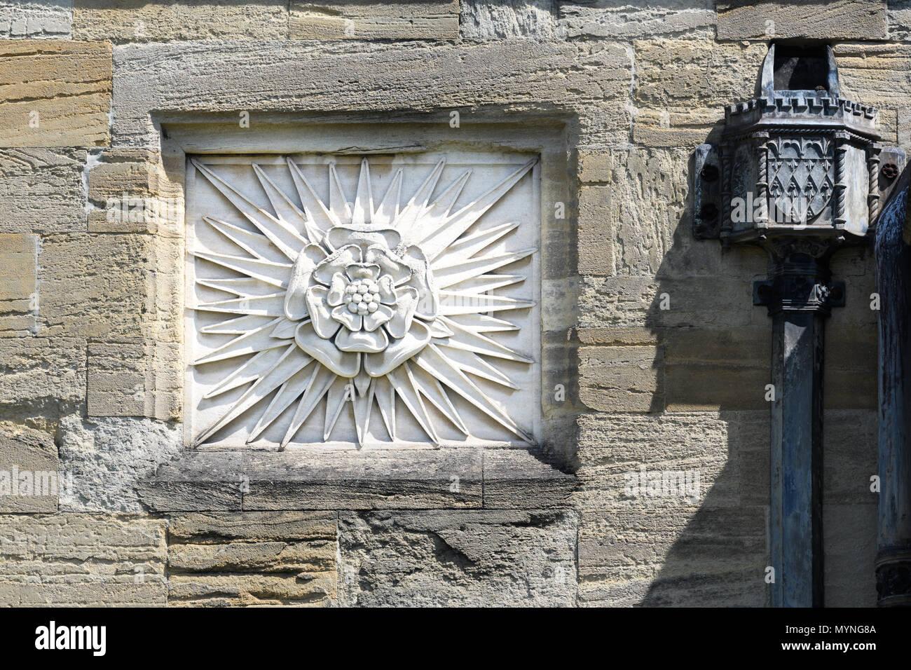 Stone Carving (von a Tudor Rose) auf einer Außenwand am Magdalen College der Universität Oxford, England. Stockbild