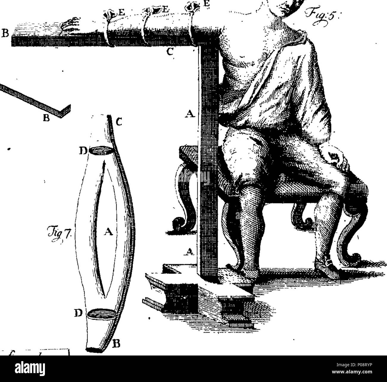 Charmant Anatomie Wörterbuch Begriffe Bilder - Anatomie Ideen ...