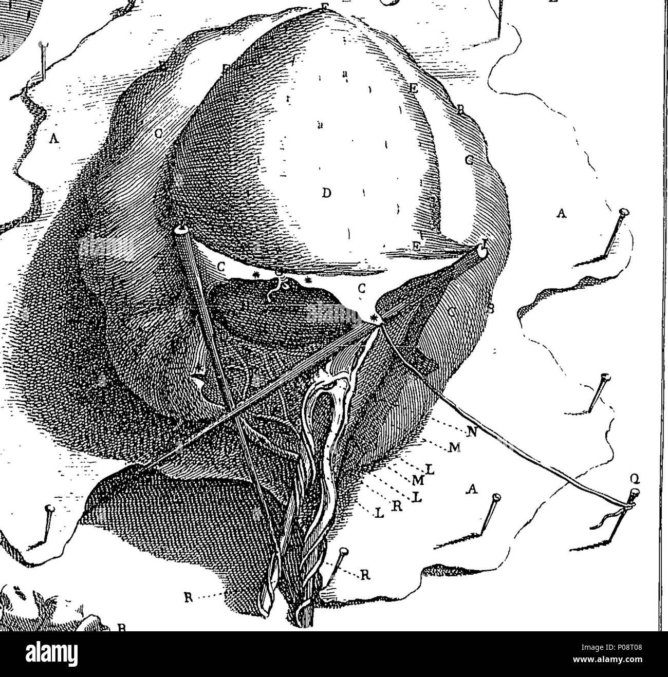 Tolle Medizinischer Anatomie Wörterbuch Bilder - Anatomie Und ...
