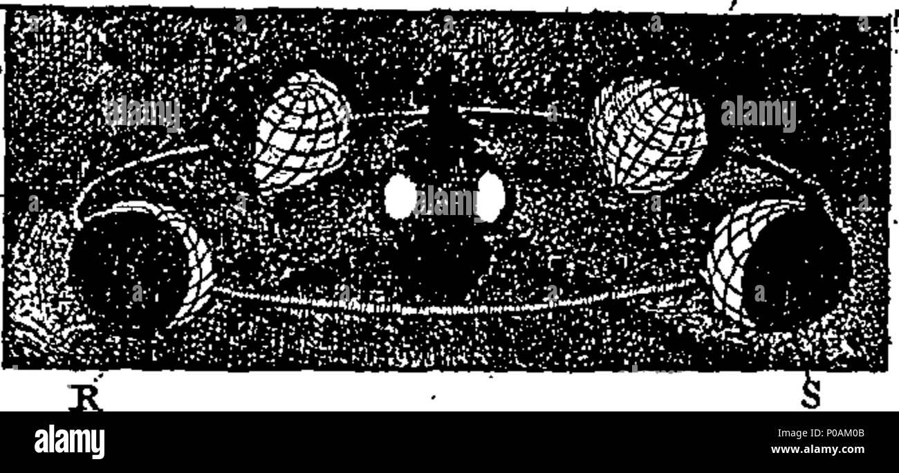 . Englisch: Fleuron aus Buch: Eine neue universelle Etymologischen Wörterbuch:... Ursprünglich von N. Bailey zusammengestellt. In den mathematischen Teil Unterstützt von G. Gordon; im Botanischen durch S. Miller; und in der etymologischen, &c. von T. Lediard, ... Und jetzt wieder mit vielen Korrekturen, Ergänzungen veröffentlicht, und Verfasser Verbesserungen, die von verschiedenen Händen. Die etymologie... überarbeitet und von Joseph Nicol Scott, M.D. korrigiert 163 Eine neue universelle Etymologisches Wörterbuch - ursprünglich von N Fleuron T 087978-33 zusammengestellt Stockbild