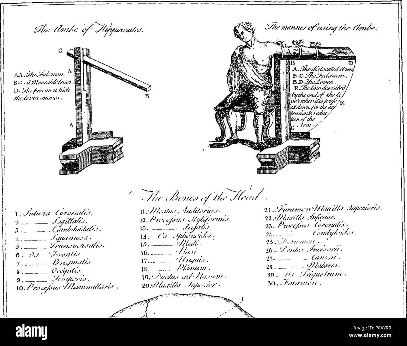 Fein Anatomie Und Physiologie Beziehung Galerie - Anatomie Ideen ...