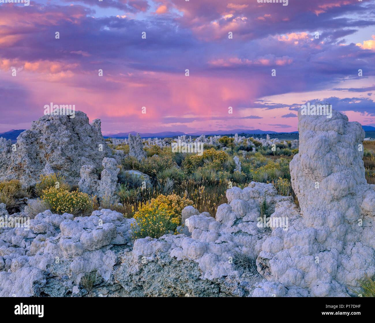 Sonnenuntergang, Tuffstein Formationen, Mono Lake, Mono Basin National Forest Scenic Area, Inyo National Forest, östlichen Sierra, Kalifornien Stockbild