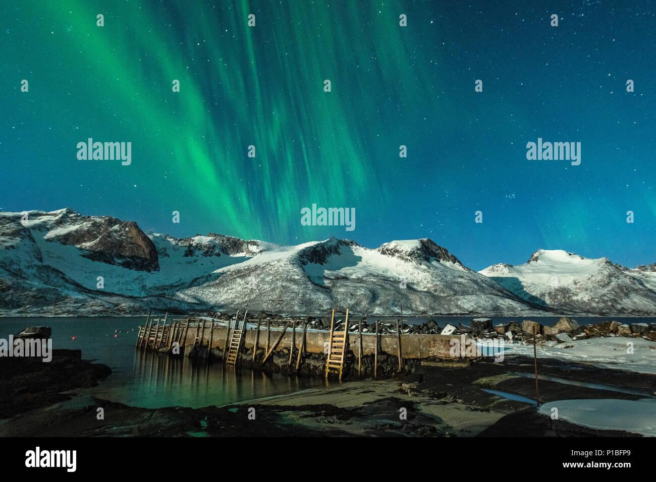Nordlichter über Baltsfjord bei Nacht, Senja, Norwegen Stockbild