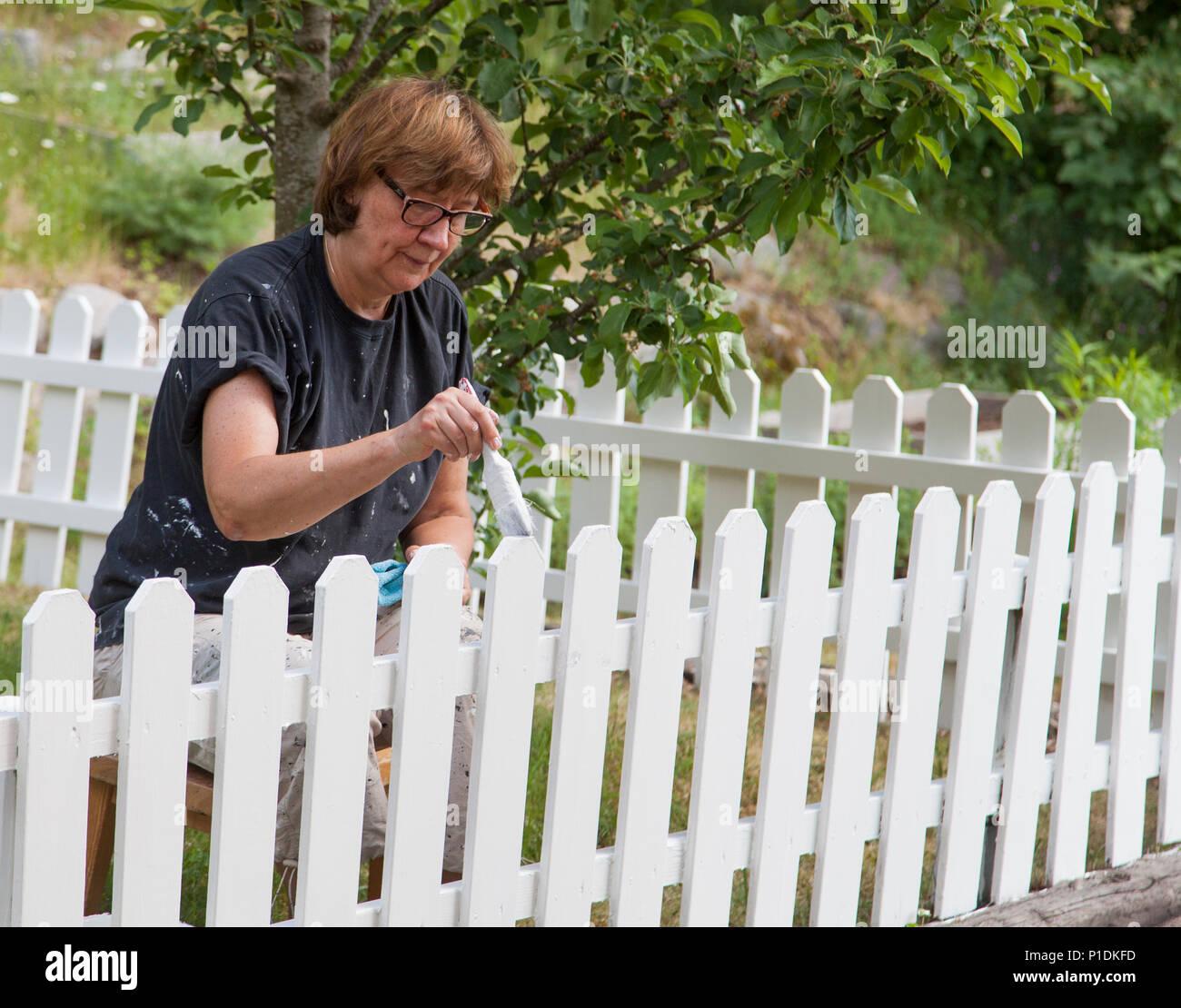Malerei Der Zaun Im Garten 2018 Stockfoto Bild 207439777 Alamy