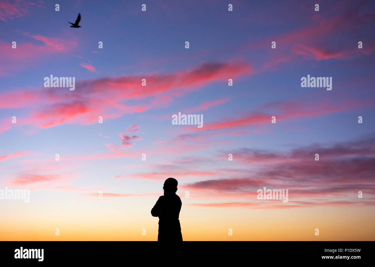 Ansicht der Rückseite Frau gegen Sonnenuntergang als Silhouette Vogel overhead fliegt: psychische Gesundheit, weibliche Depression, positives Denken... Konzept Bild Stockbild