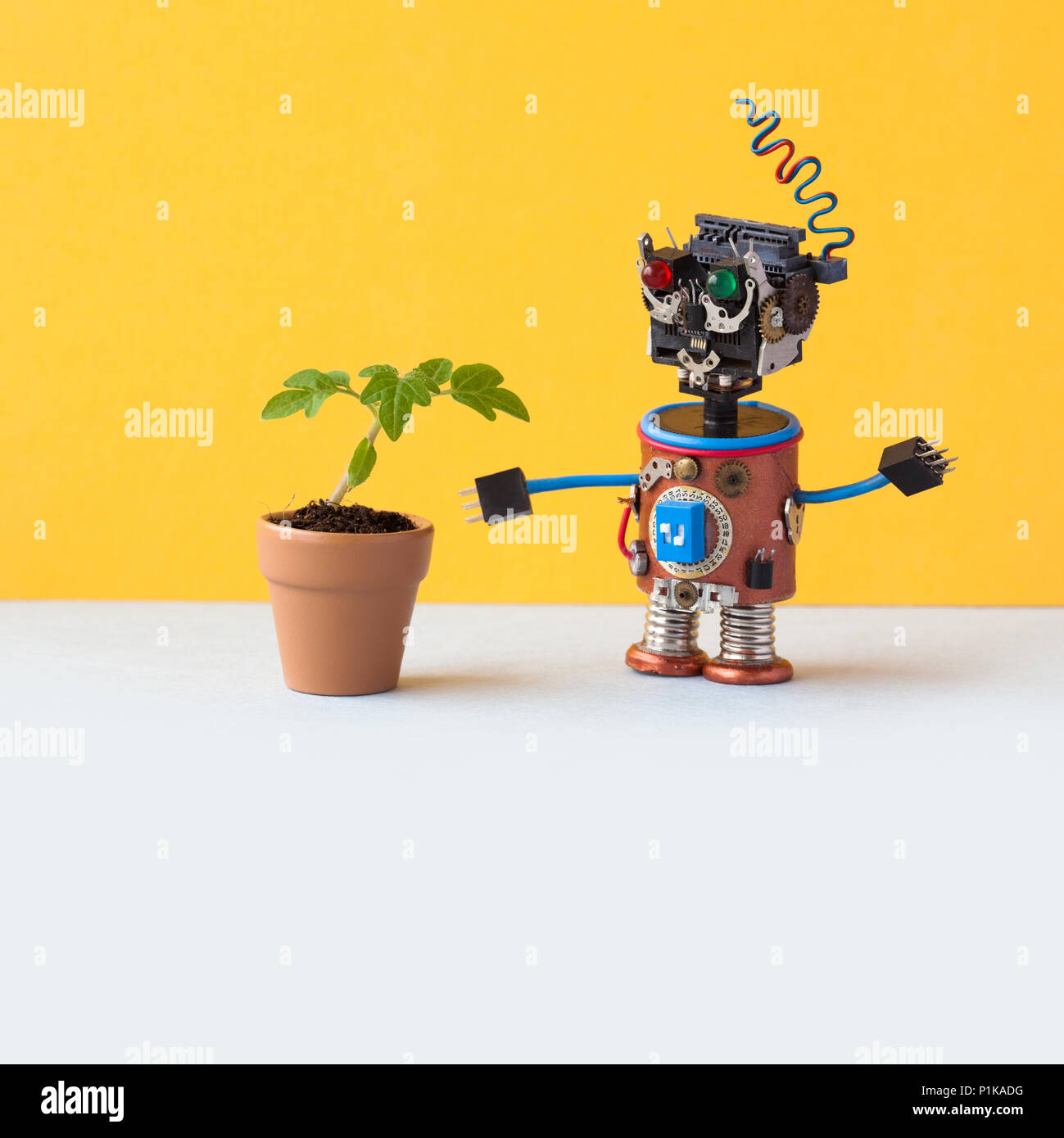 Roboter erforscht eine lebendige grüne Pflanze in einer Blume Tontopf. Künstliche Intelligenz gegenüber organischen Lebens. Gelbe Wand, Hintergrund, weiße Stock. Kopieren Sie Platz. Stockbild