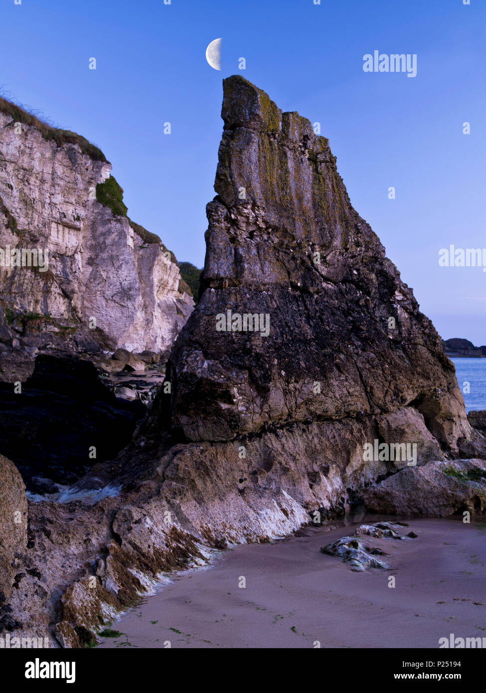 Nordirland, Antrim, Causeway Coast, Steilküste aus Muschelkalkstein bei Ballintoy, blaue Stunde, Abendhimmel mit Mond Stockbild