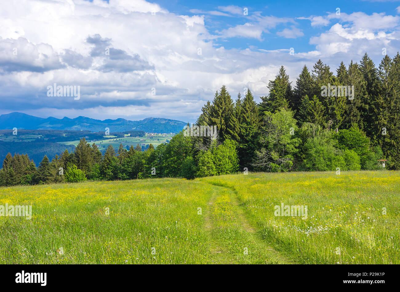 Landschaft und ländlichen Gegend mit Feld Pfad in der Westallgau Region rund um den Ort der Scheidegg in der Nähe von Lindau, Bayern, Deutschland. Stockbild
