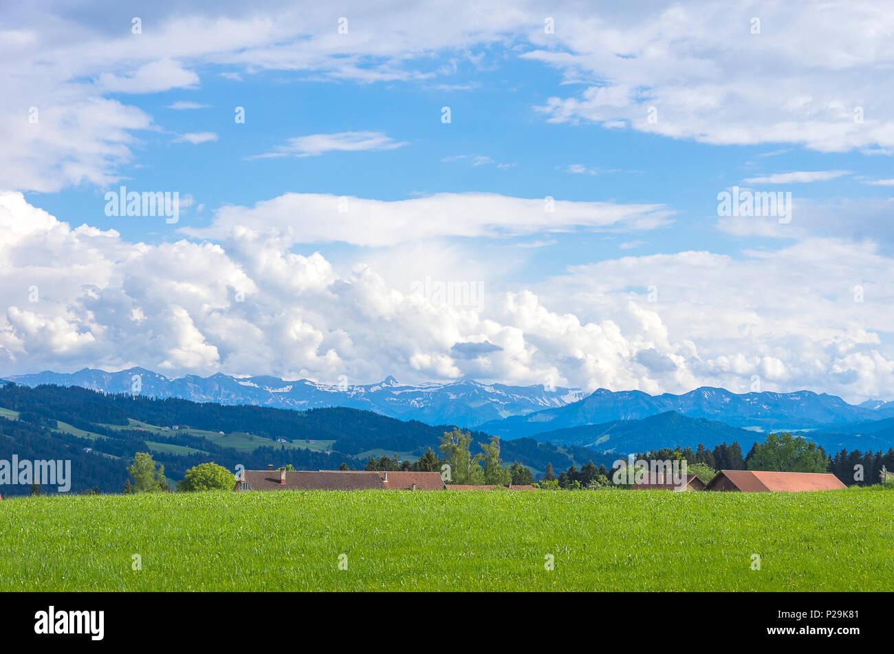 Ländlichen Raum und Landschaft im Westallgau Region rund um den Ort der Boserscheidegg in der Nähe von Lindau, Bayern, Deutschland. Stockbild