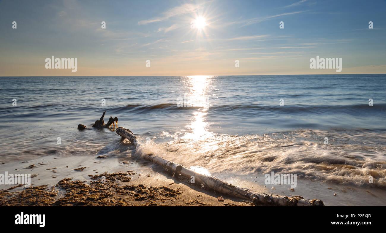 Sommer, Sonne, Goldene Stunde, Strand, Ostsee, Mecklenburg-Vorpommern, Deutschland, Europa, Weststrand, Nationalpark, Nationalpark Vorpommersche Boddenlandschaft, Stockbild