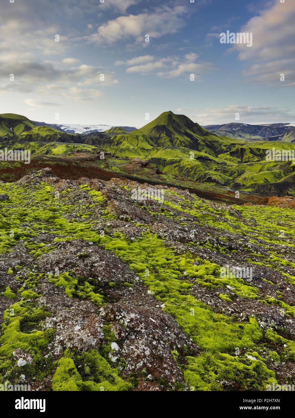 Berglandschaft, Rjupnafell, Myrdalsjoekull, Fjallabak, South Island, Insel Stockbild