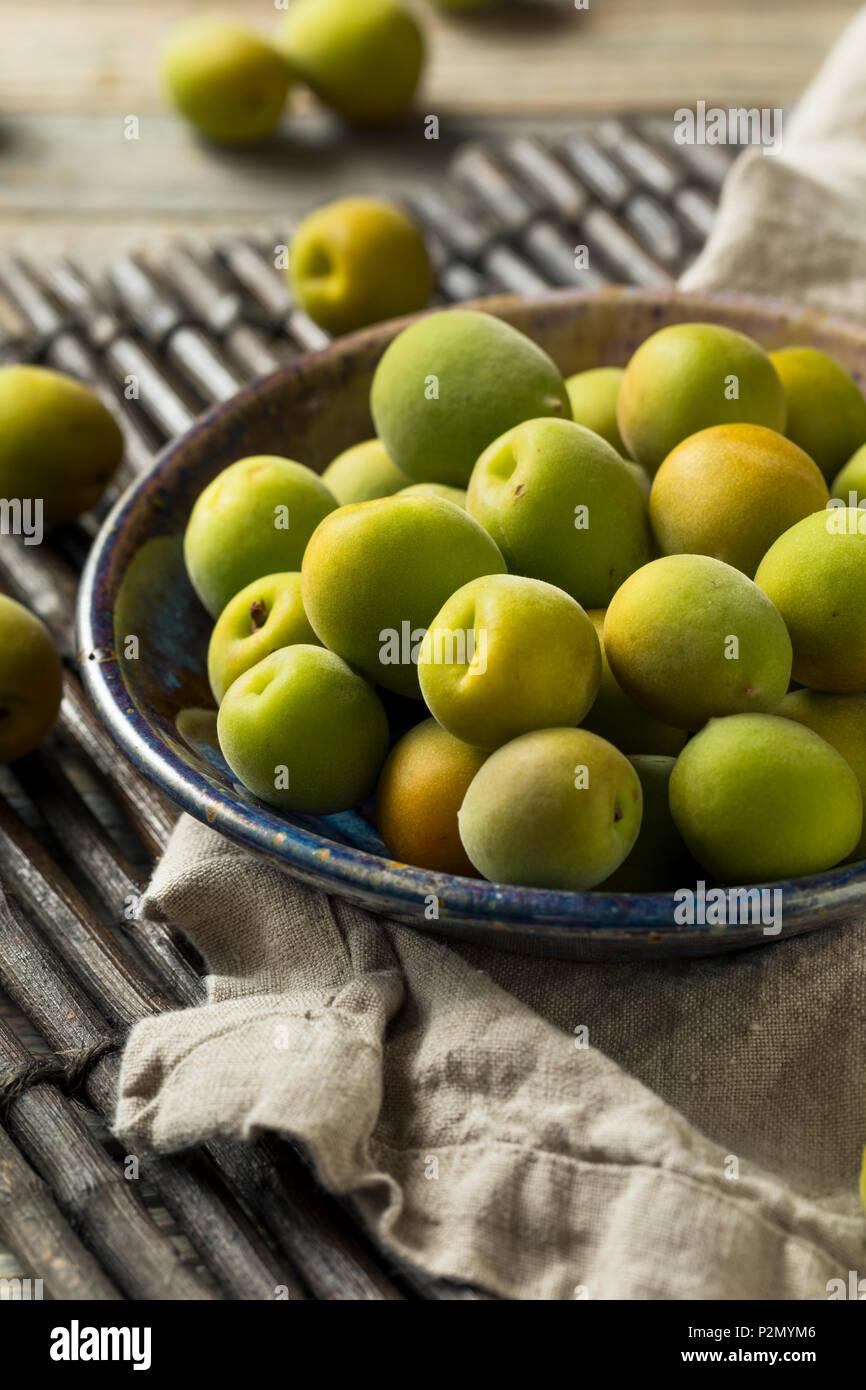 Raw Green Organic Ume Obst bereit zu Essen Stockbild