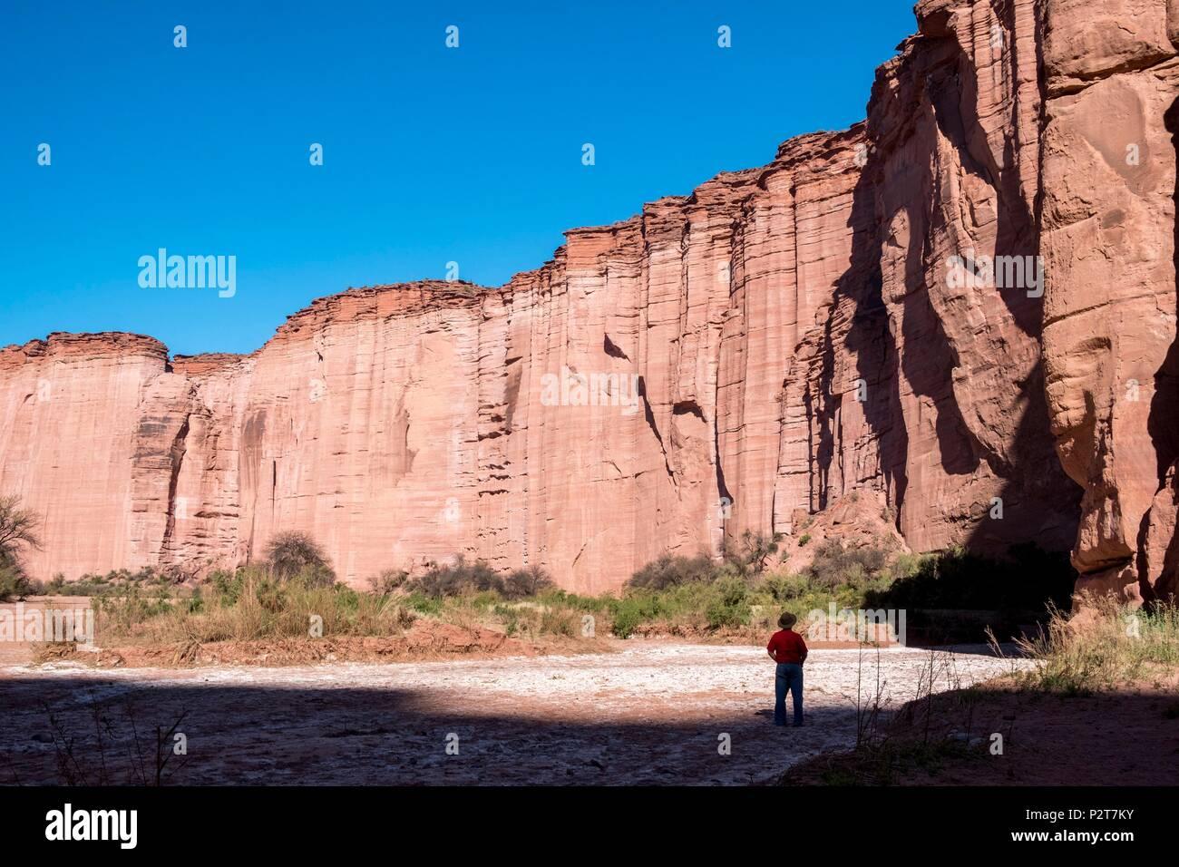 Argentinien, in der Provinz La Rioja, in der Nähe von Villa Union, Talampaya Nationalpark, Parque Nacional Talampaya als Weltkulturerbe von der UNESCO, Talampaya Cañon Stockbild
