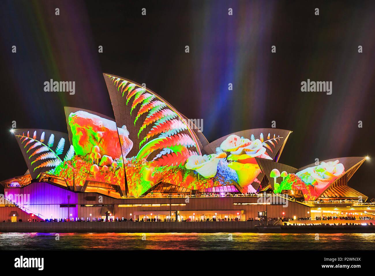 Sydney, Australien - 25. Mai, 2018: die Stadt Sydney Wahrzeichen von Sydney Opera House am Hafen am Wasser während der jährlichen Light Show aus Licht und Ideen in Brig. Stockbild