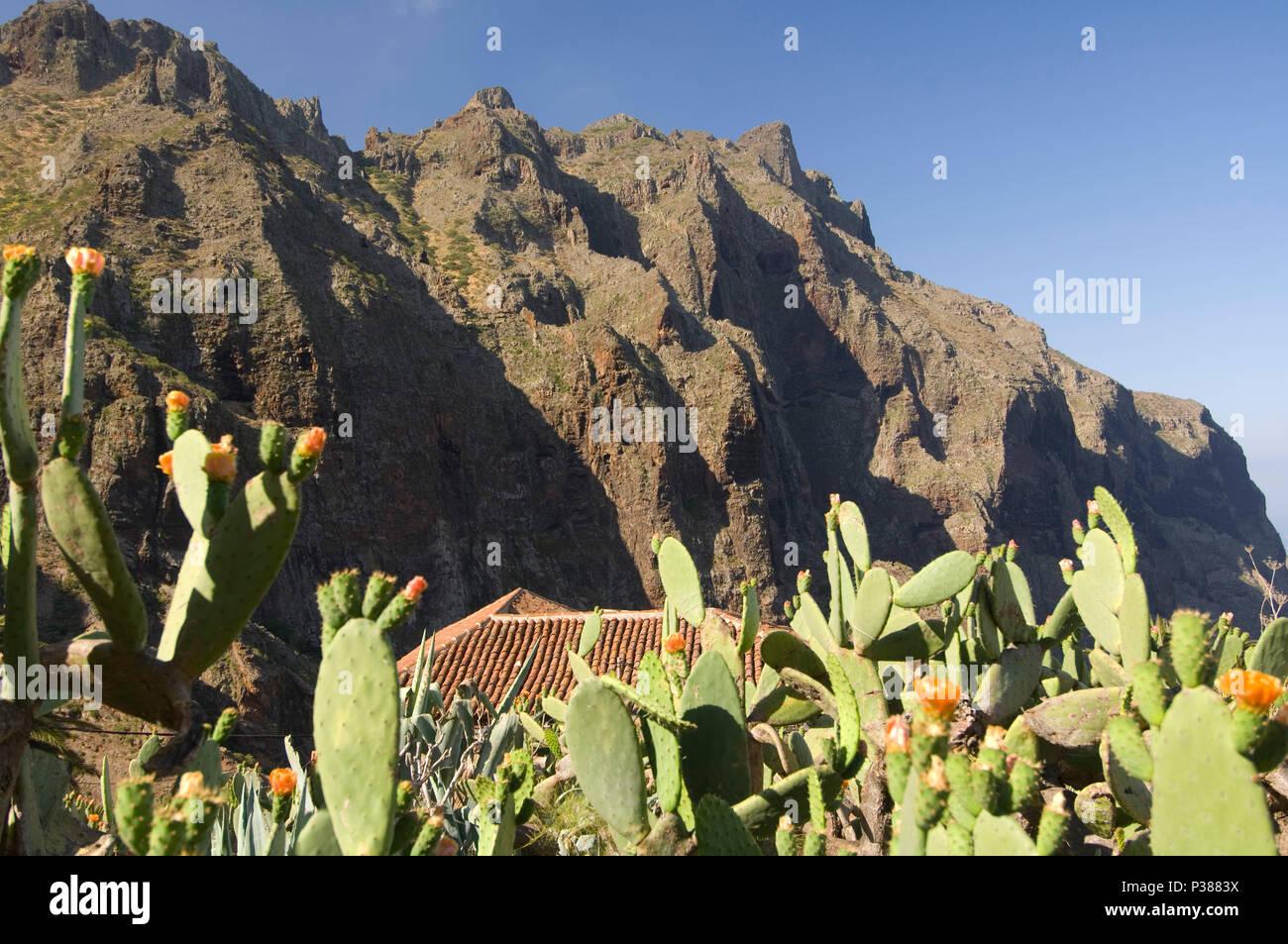 Masca, Spanien, Landschaft im Teno Gebirge in Teneriffa. Stockbild