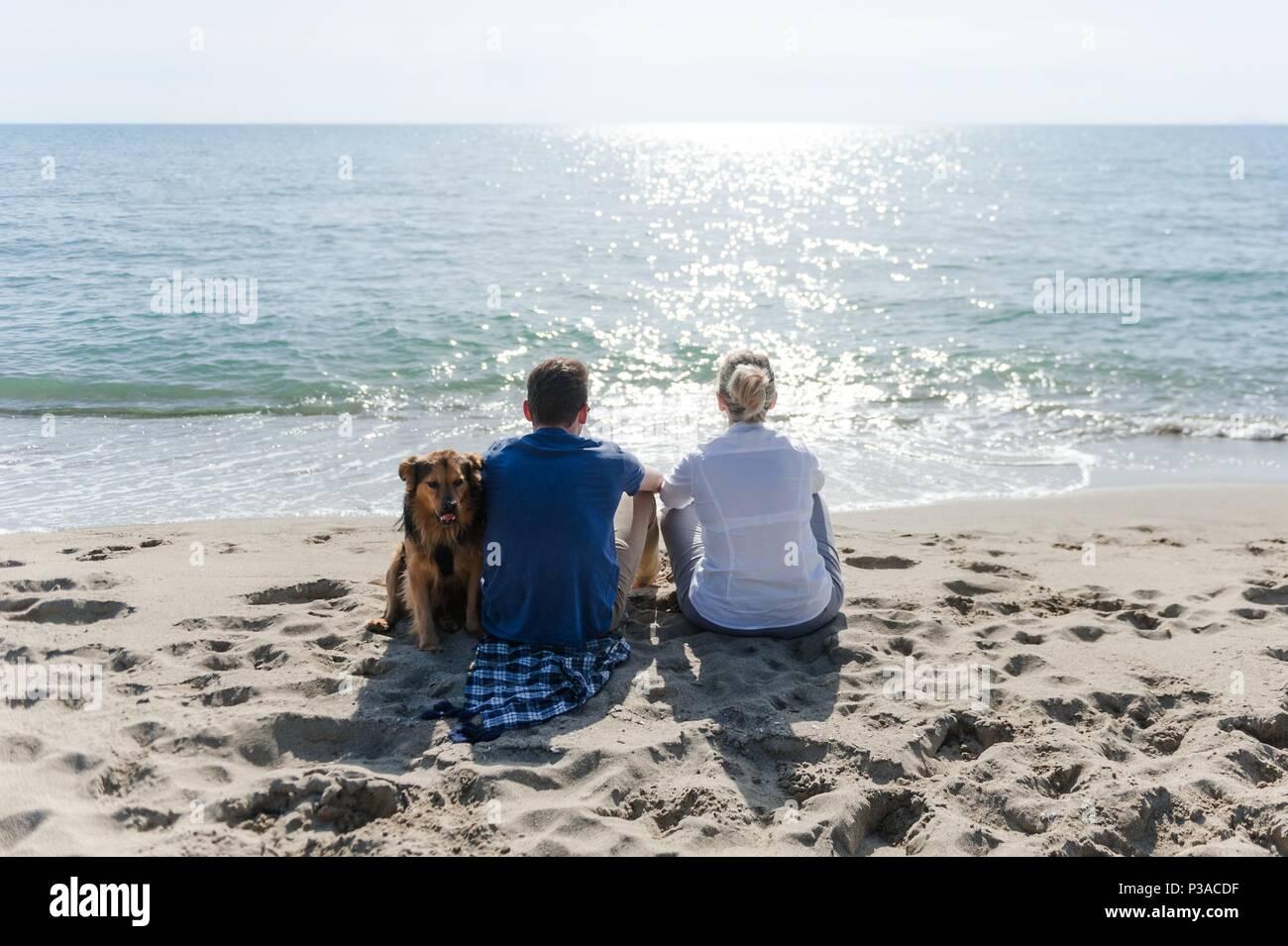 Mutter mit ihrem Sohn und ihrem Hund am Strand den Sonnenuntergang zu beobachten. Stockbild