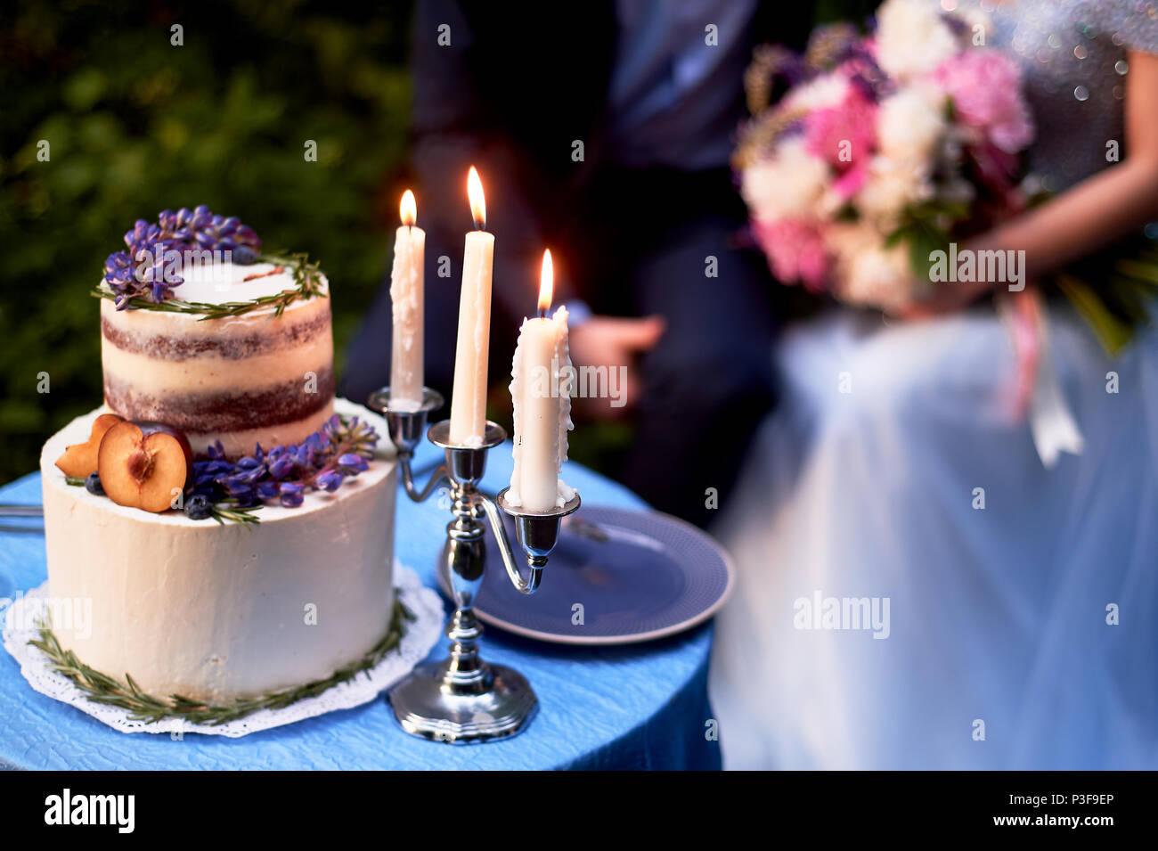 Romantische Hochzeit Abendessen, im Park am Wasser. Viel Grün. Schöne weiße tiered Kuchen mit Blumen und einem pflaumenbaum eingerichtet. Hochzeit Dekor Stockbild