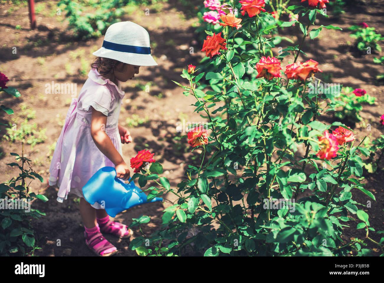 Susse Kleine Madchen Bewasserung Rose Blumen Im Garten Sommer Urlaub