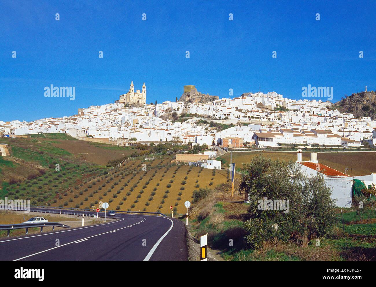 Übersicht. Olvera, Provinz Cadiz, Andalusien, Spanien. Stockbild