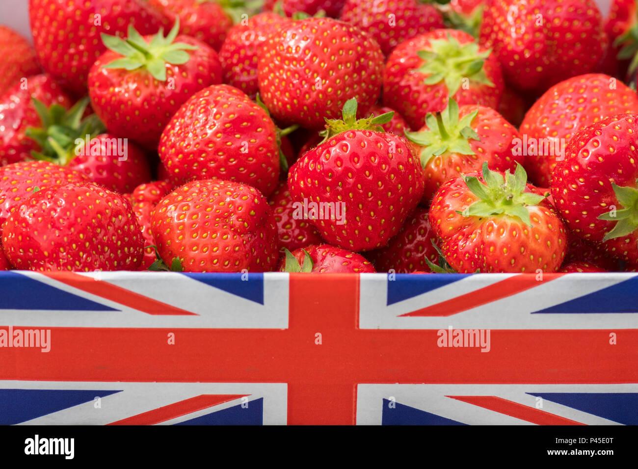 Britische Erdbeeren im Union Jack box-UK Stockbild