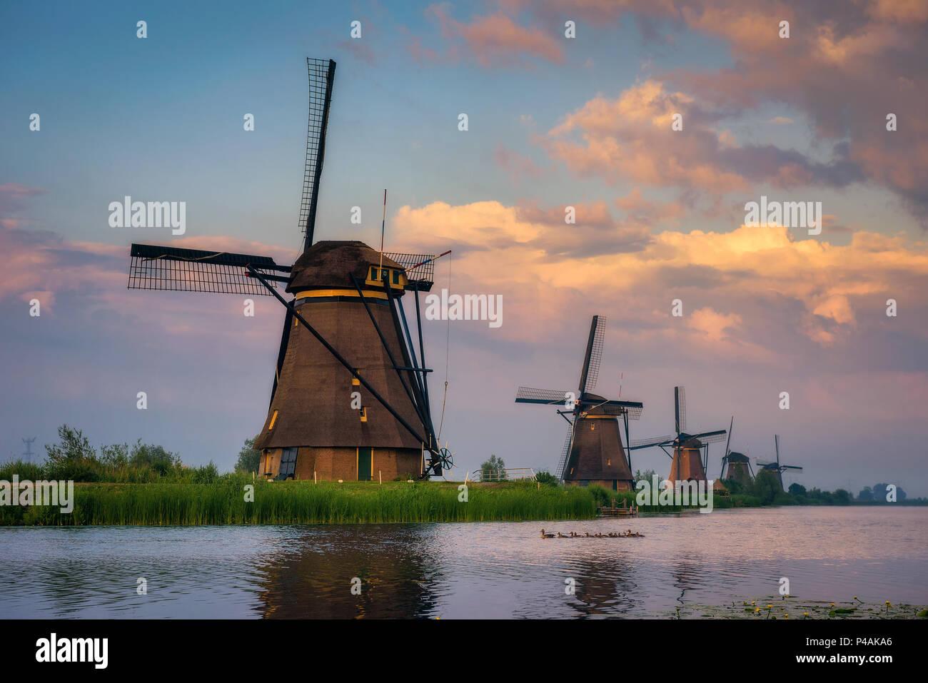 Sonnenuntergang über alte holländische Windmühlen in Kinderdijk, Niederlande Stockbild