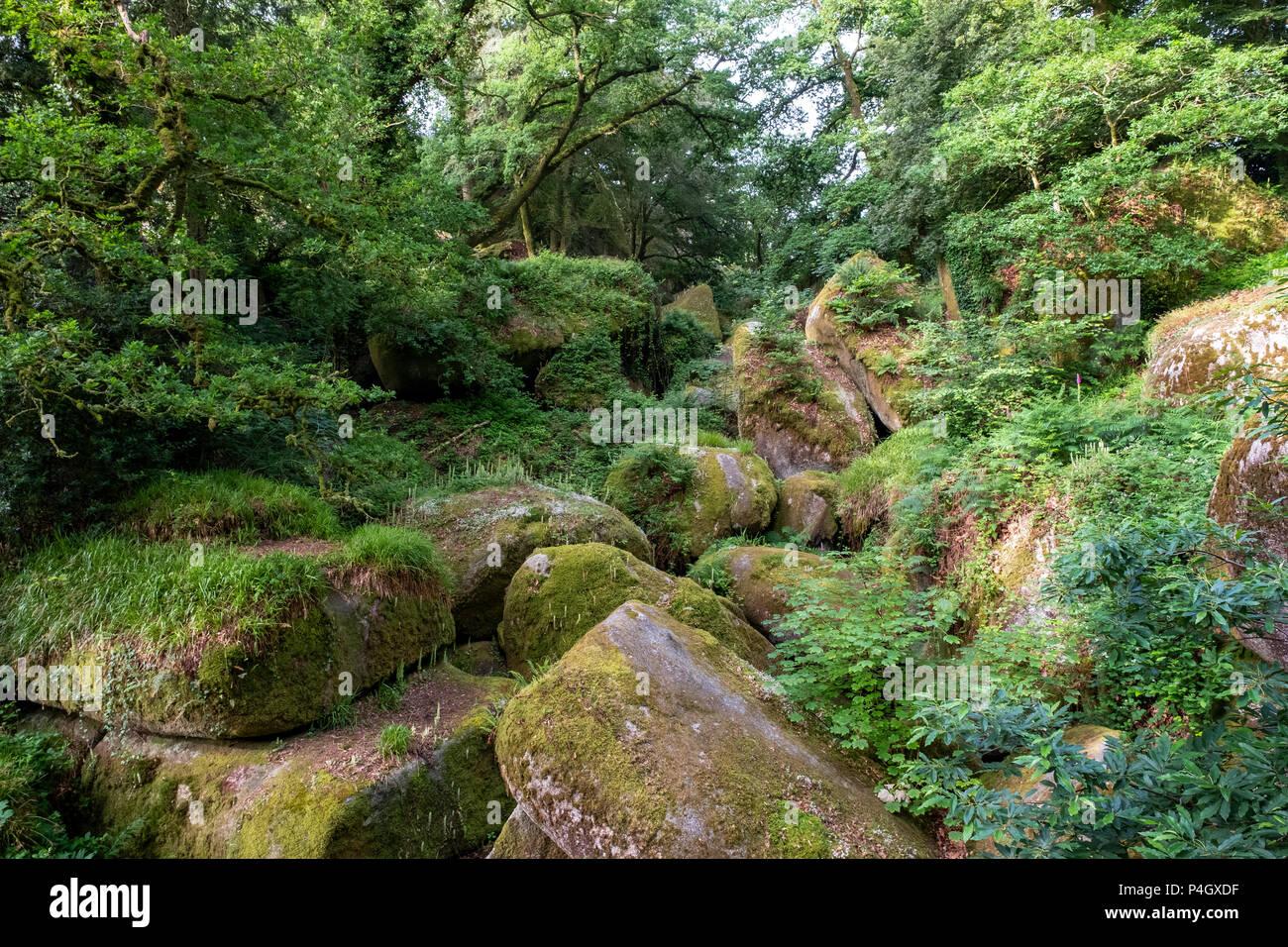 Le Chaos de Rochers, Huelgoat, Finistère, Bretagne, Frankreich Stockbild