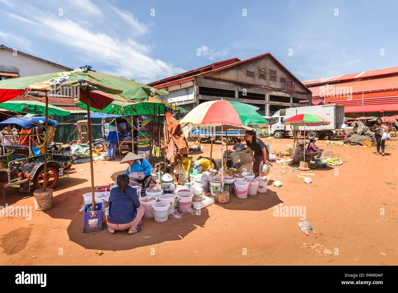 Blockiert unter Sonnenschirmen, Marktplatz, Pakse, Laos Stockbild
