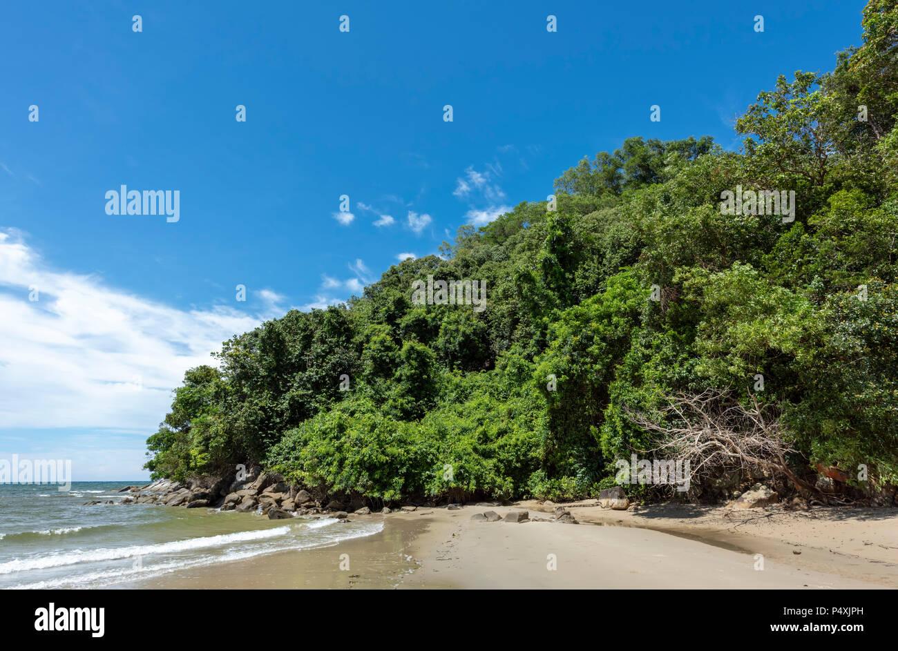 Die Borneo rainforest reicht bis in das Südchinesische Meer bei Kota Kinabalu, Borneo, Malaysia Stockbild