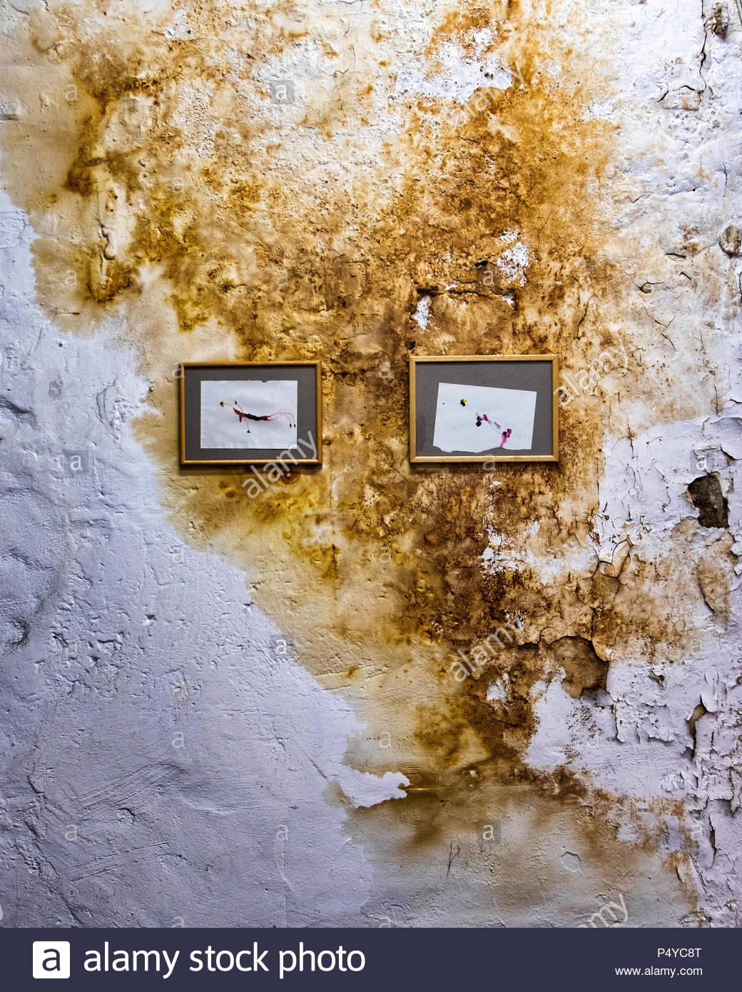 Deutschland, Berlin, Mitte, 23. Juni 2018. Die Aktuelle Ausstellung, AROMA  MUSA, In Der Torstraße 111   Forum Für Zeitgenössische Kunst Berlin E.