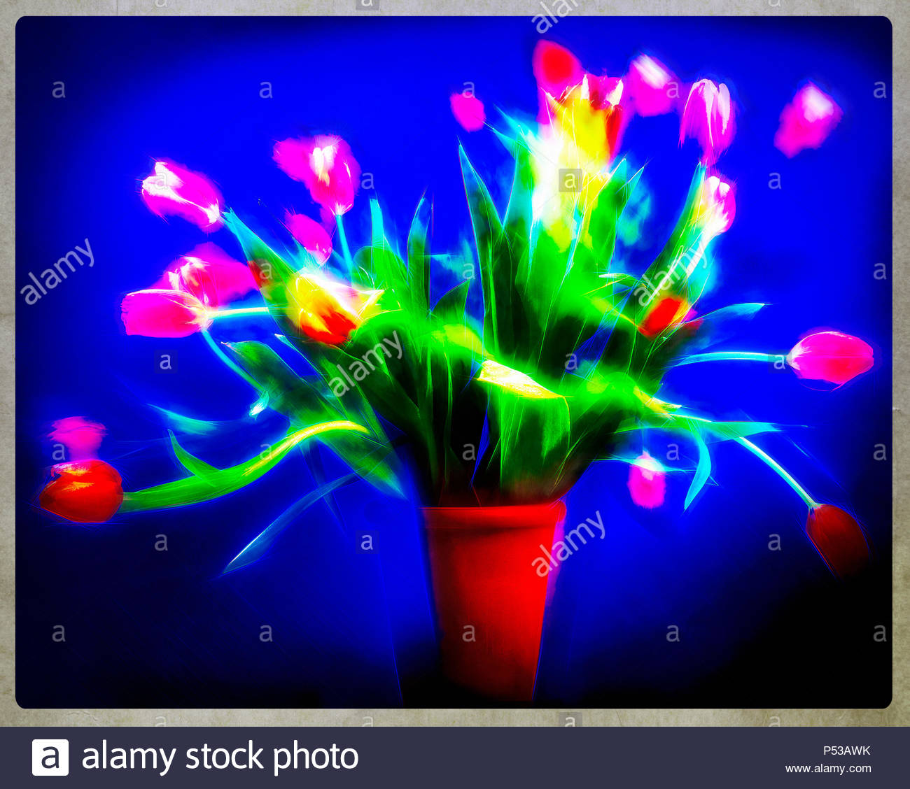 Bildende Kunst: Tulpen für eine Grußkarte Design Stockbild