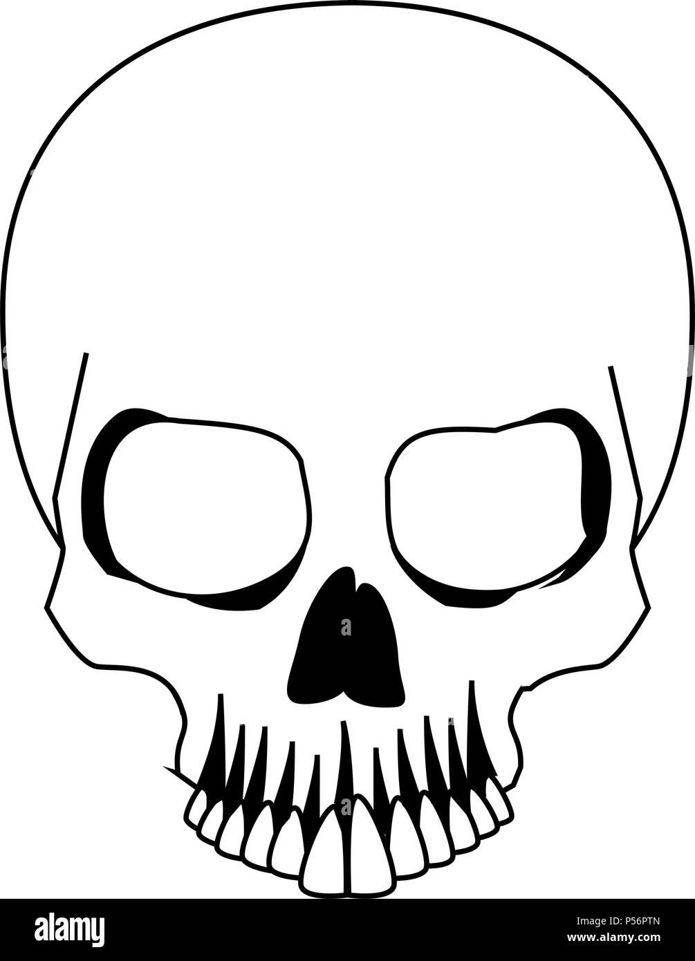 Tolle Menschlicher Schädel Anatomie Quiz Zeitgenössisch - Anatomie ...