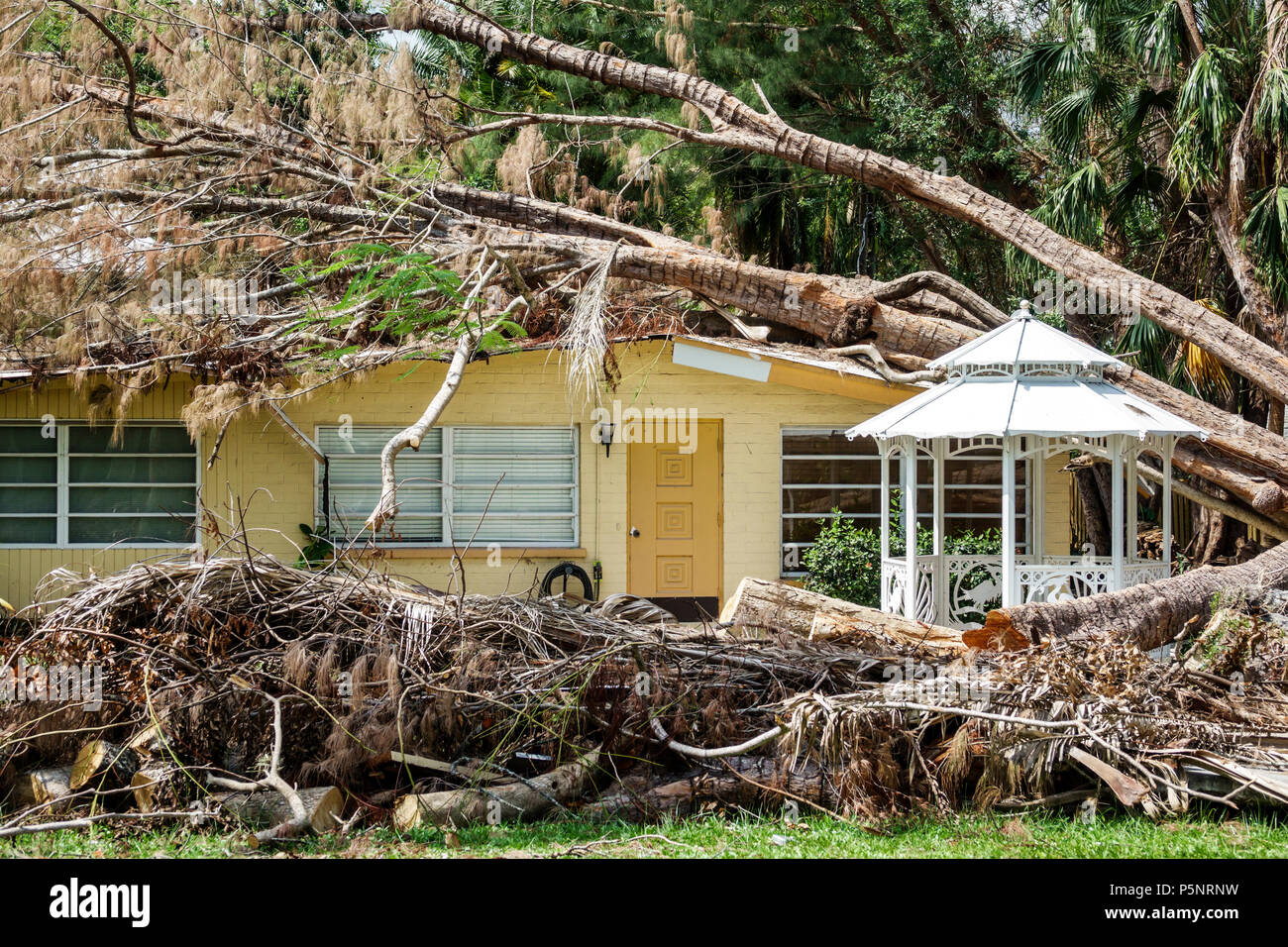 Fort Ft. Myers Florida Haus Home Residenz Sturmschäden Zerstörung nach gefallenen Baum Hurrikan Irma beschädigtes Dach Baumstamm Stockbild