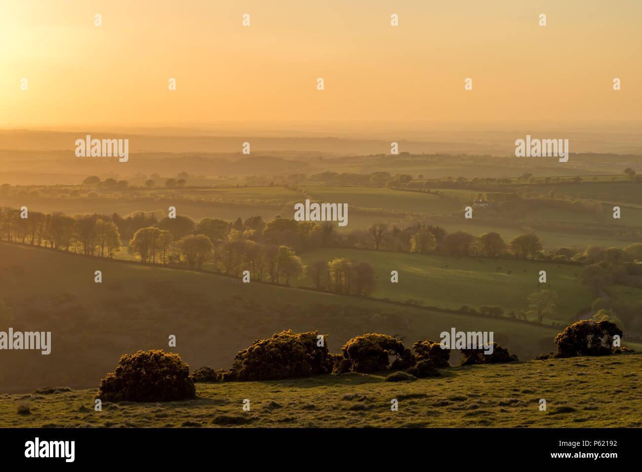 Diffuse goldenen Licht über schöne Landschaft Stockbild