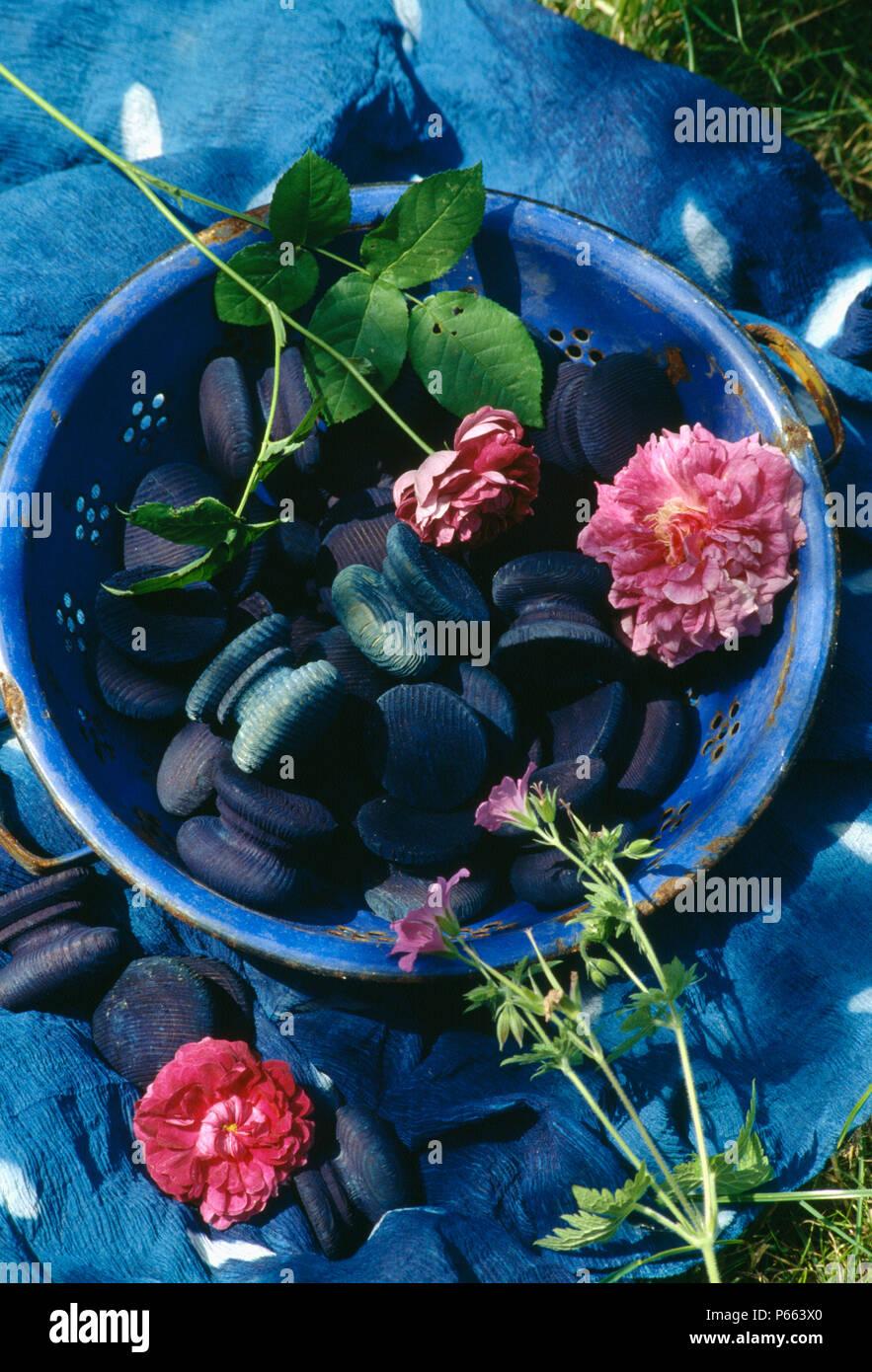 Still Life Single Rosa Rosen Mit Indigo Gefärbt Tür Knöpfe In Blauer  Schüssel Auf Blau Indigo Gefärbten Stoff