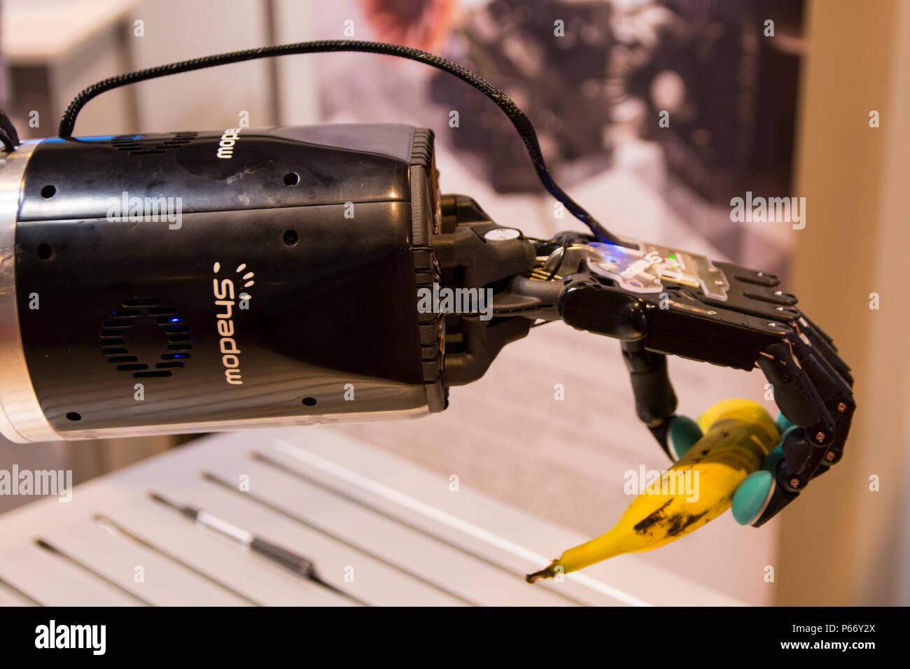 Geschickte hand (Robotic sensible Hand) von Shadow Robot Company, Holding mit Sorgfalt eine Banane. In der GR-EX Gipfel (Global Roboter Expo). Stockbild