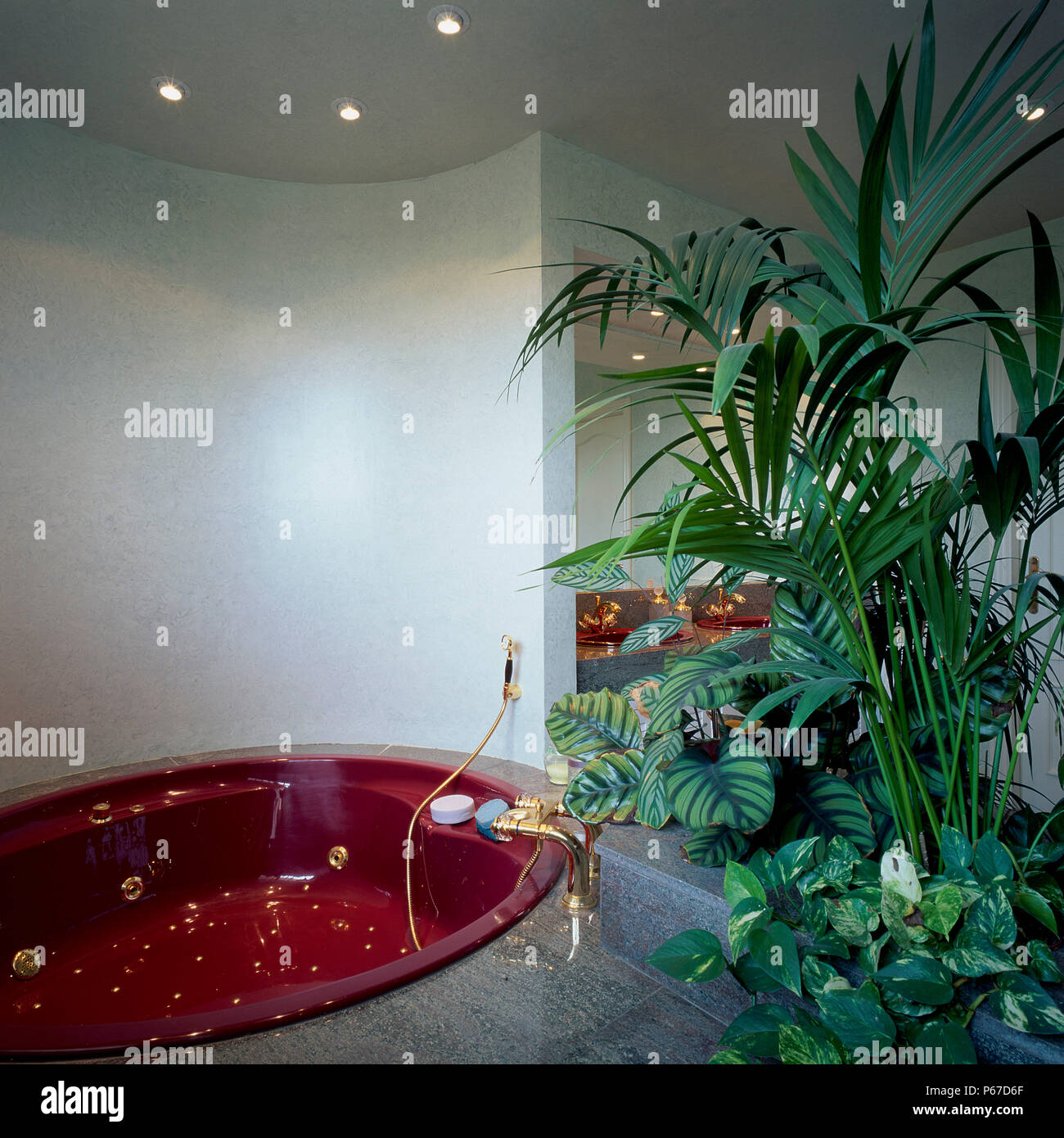 Pflanzen Fur Das Badezimmer Stockfotos Und Bilder Kaufen Alamy
