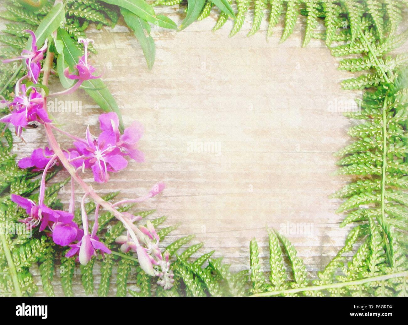 floral background mit wilden blumen und kr utern f r einladung ansage gru karten wildes holz. Black Bedroom Furniture Sets. Home Design Ideas