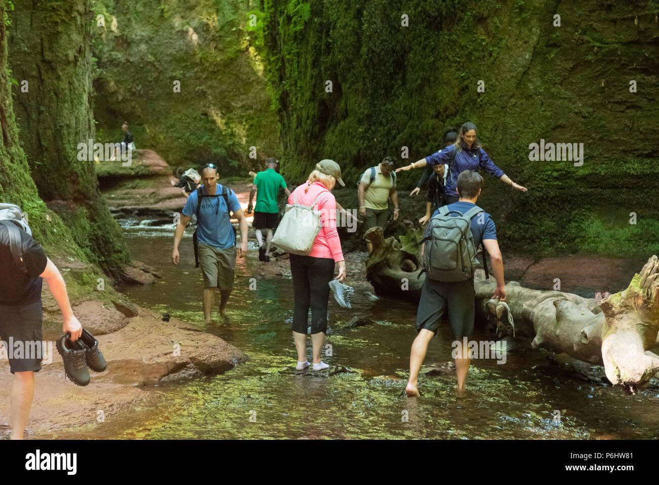 Touristen am Finnich Glen, Stirlingshire, Schottland - eine Schönheit Punkt unter erhöhtem Druck durch als Drehort in Outlander verwendet werden, Stockbild