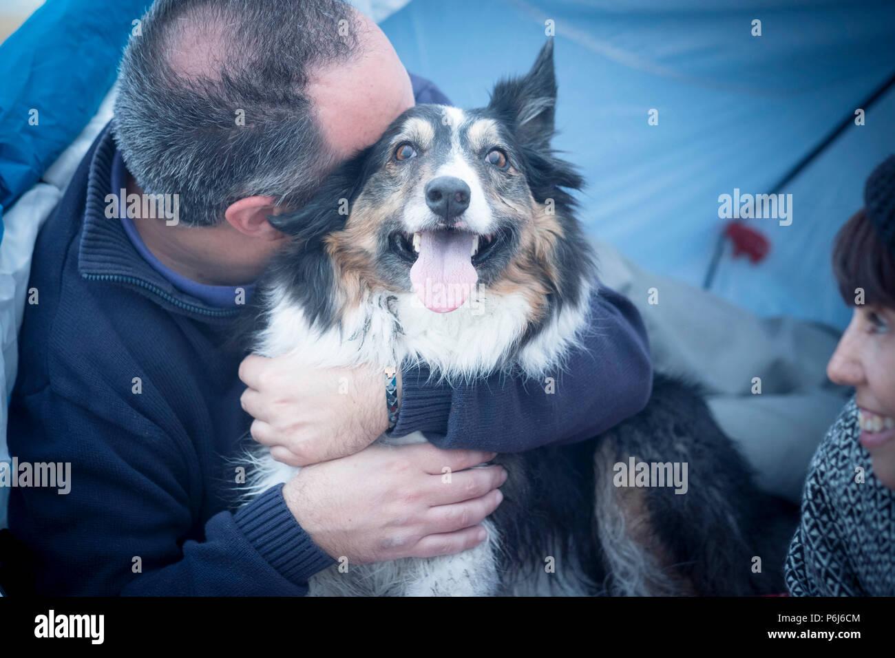 Schön schöner Hund Border Collie wirklich froh und glücklich umarmte Konzept von seinem Besitzer kaukasischen mittleren Alter Mann. Frau schauen Sie. Familie alternative c Stockbild