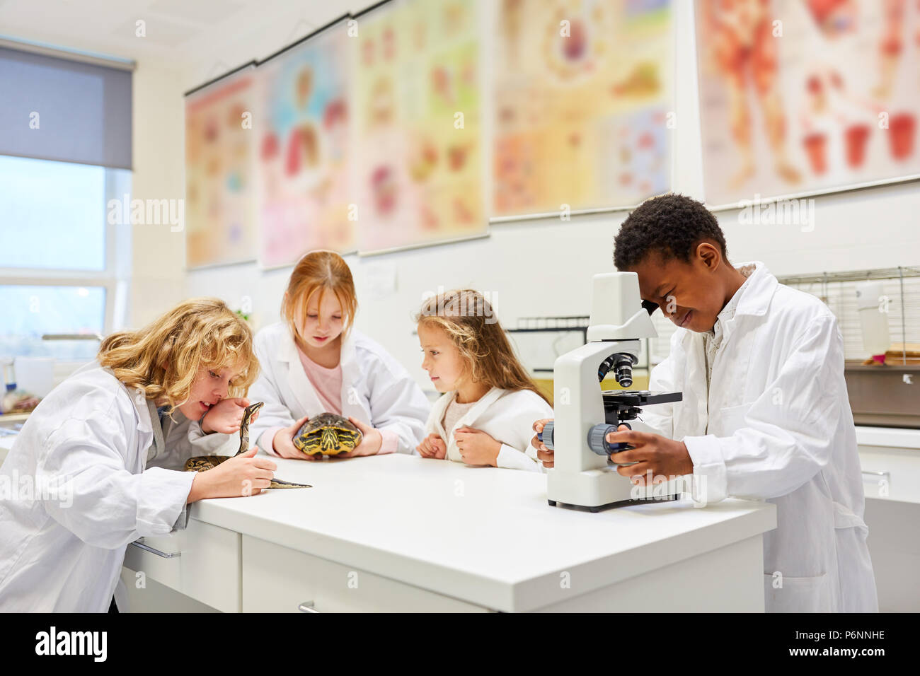 Kinder der biologie klasse arbeiten mit tieren und einem mikroskop