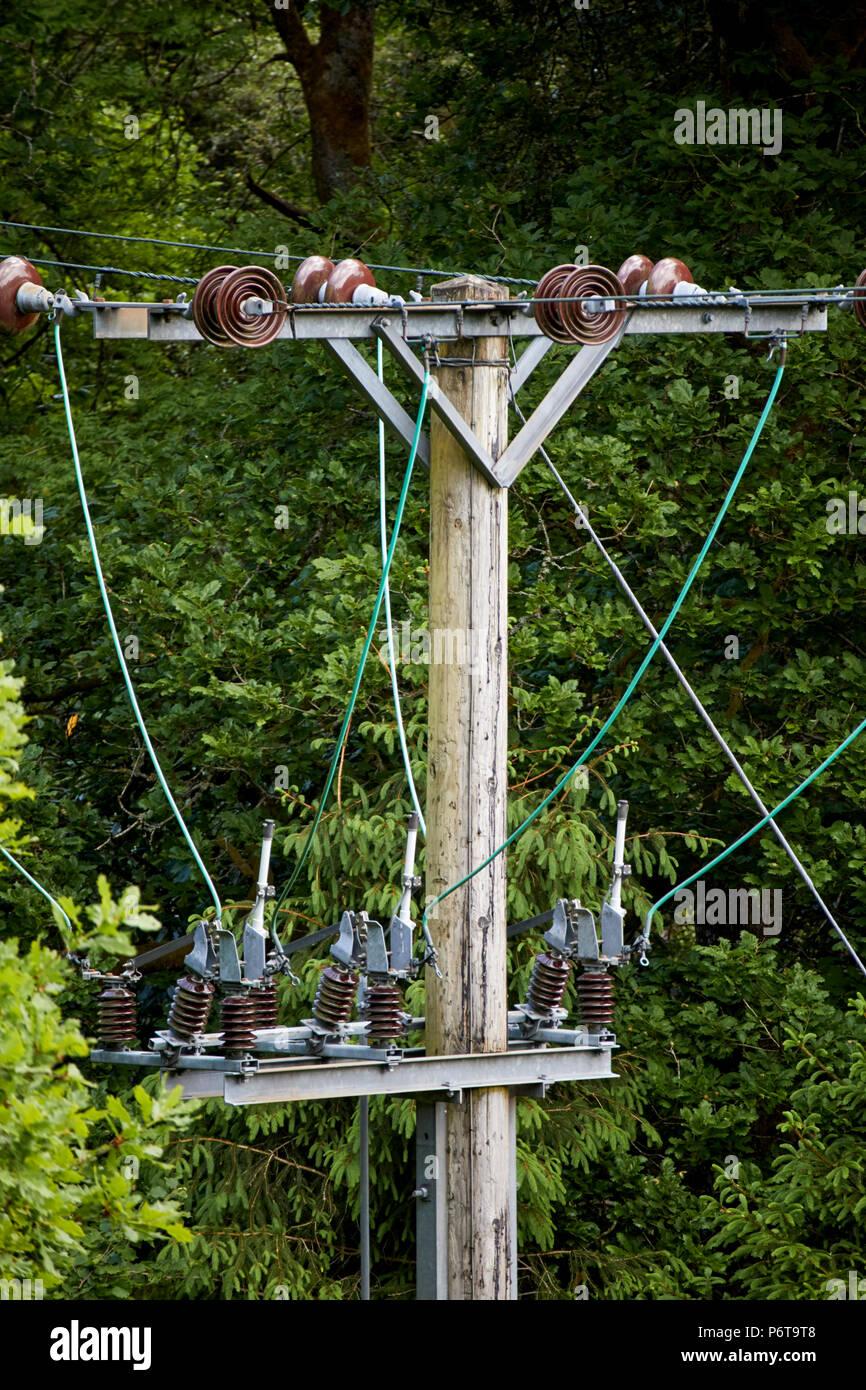Keramikscheibe Isolatoren und Kabel an der Spitze eines Strom- pol Linien durch Rodung England uk läuft Stockbild