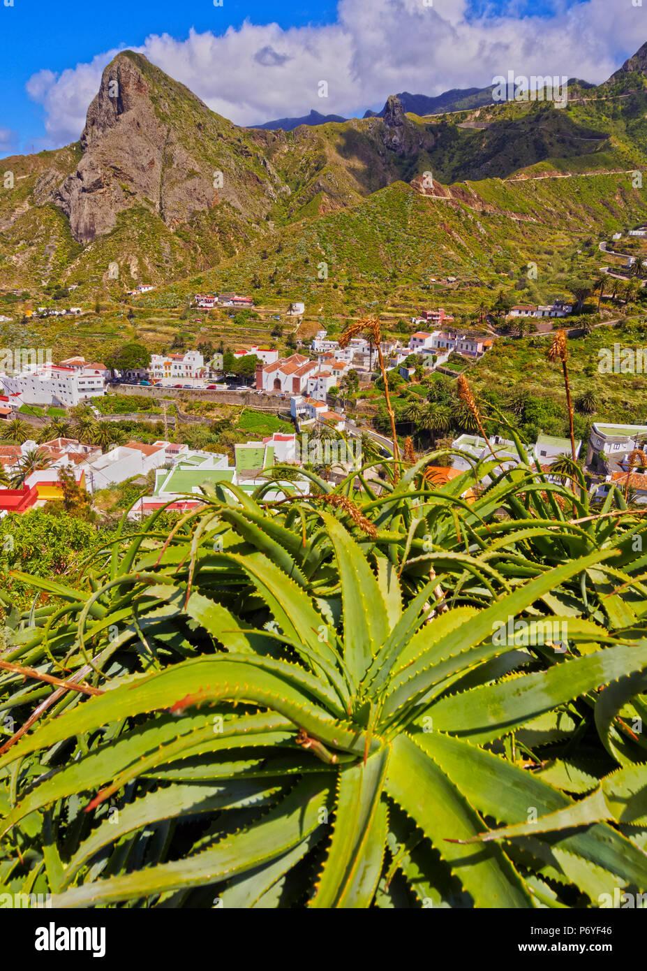 Spanien, Kanarische Inseln, Teneriffa, Taganana, Stadtbild mit Anagagebirge im Hintergrund und Aloe Pflanze im Vordergrund.Stockfoto