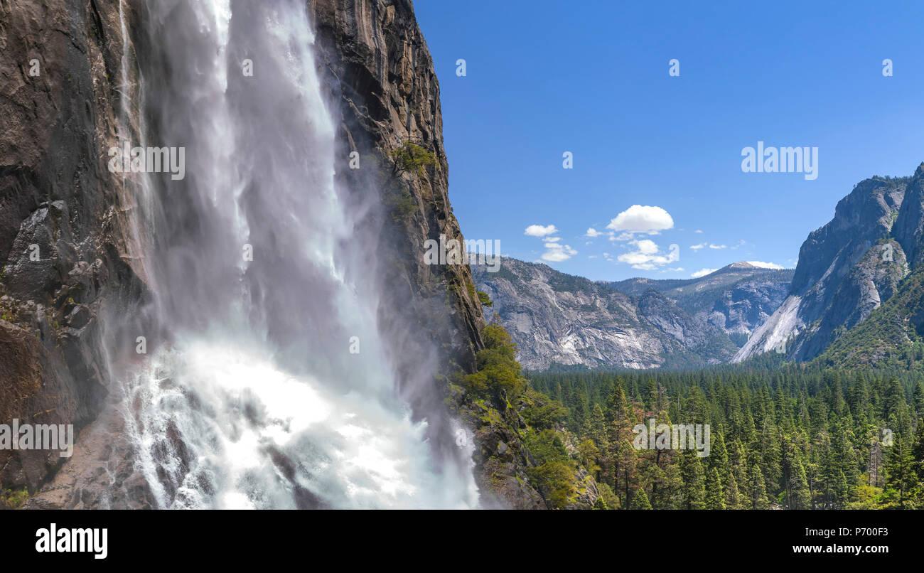 Unteren Yosemite Falls und Wälder Stockbild