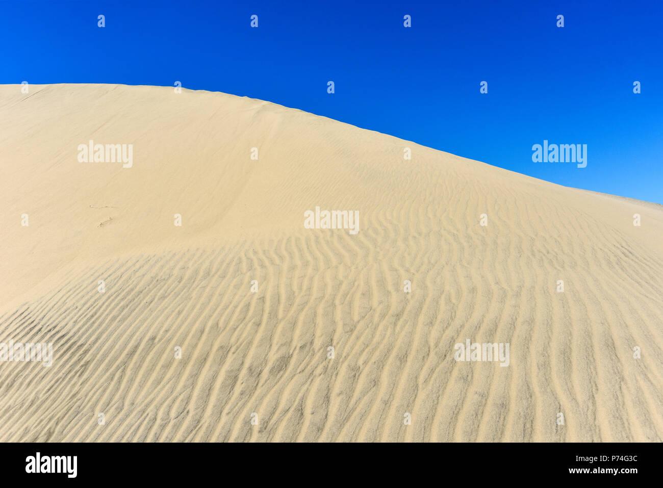 Der Oregon Sand Dünen in Florenz, Oregon, USA Stockbild