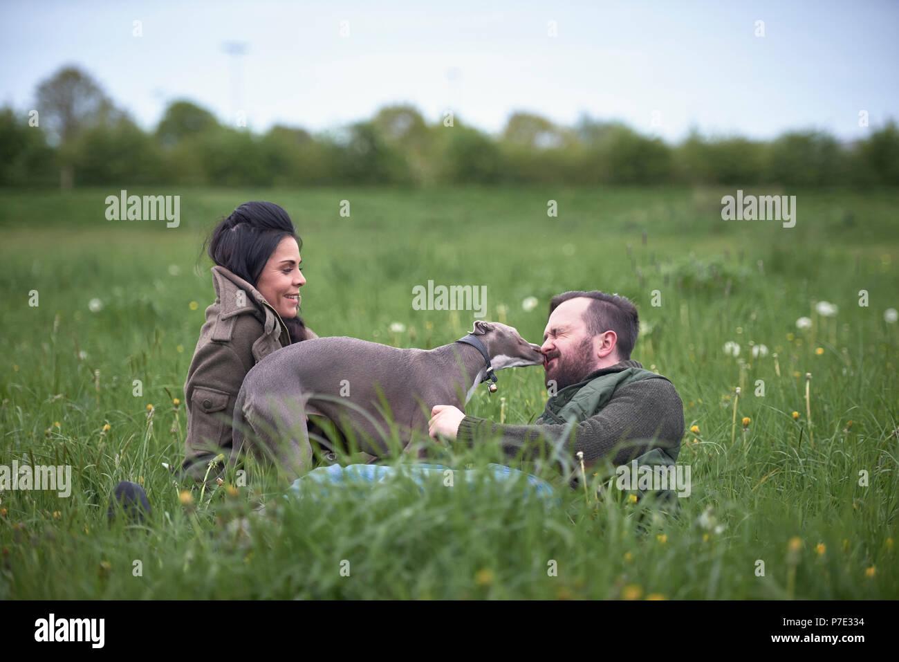 Mann und Frau in Feld spielen mit Hund Stockbild