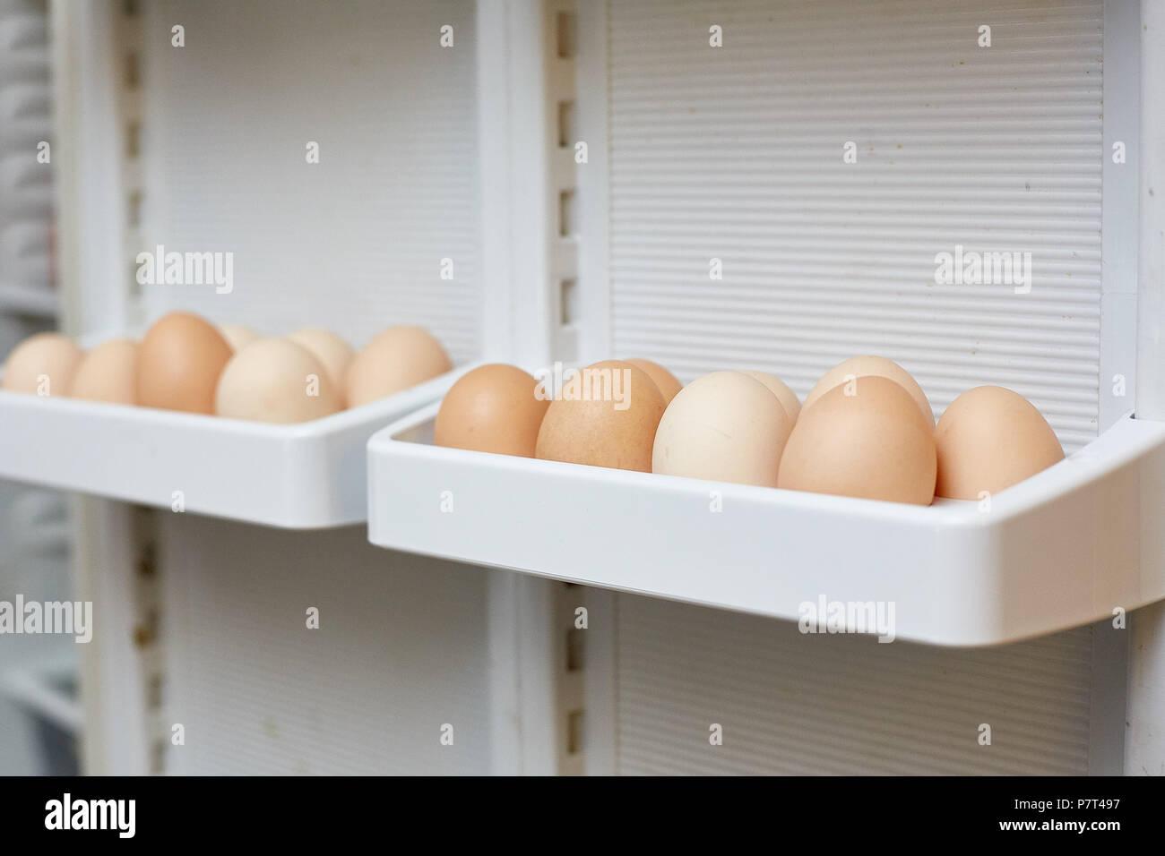 Kühlschrank Regal : Frischen eiern in einem regal der kühlschrank stockfoto bild