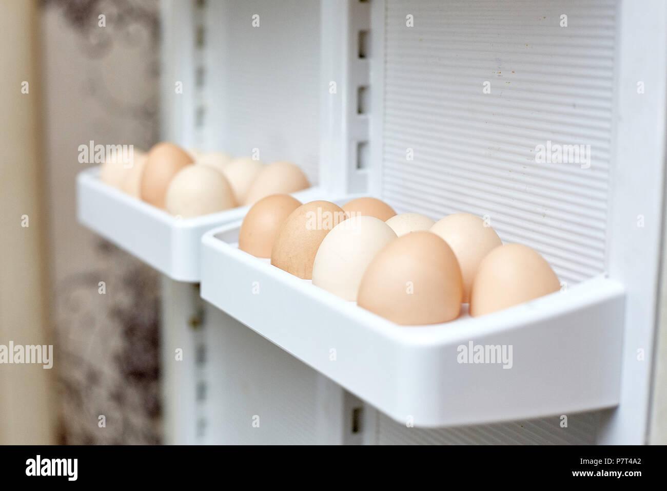 Kühlschrank Ei : Frischen eiern in einem regal der kühlschrank stockfoto bild