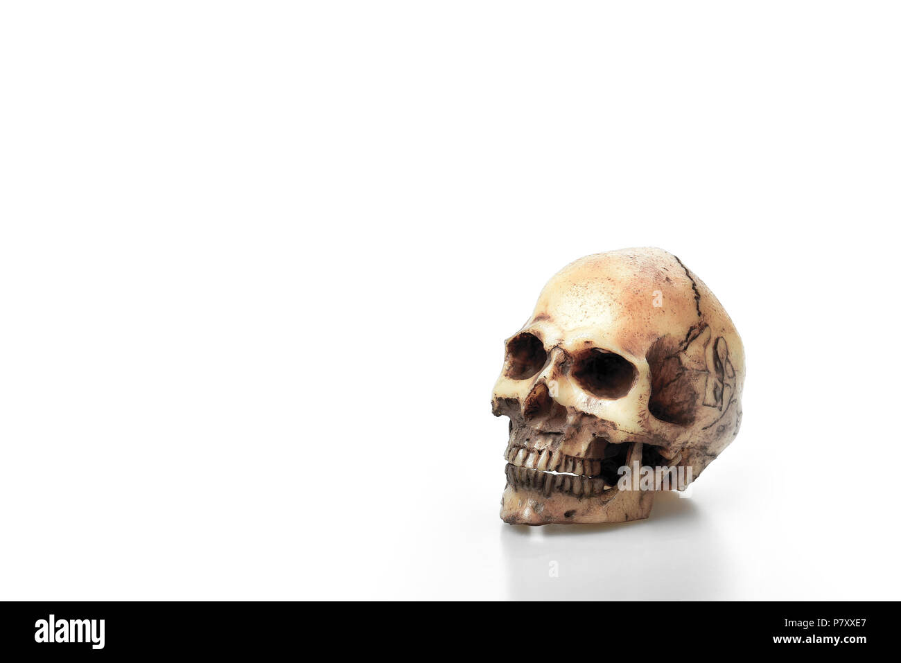Risse im Kopf Skelett Knochen und Schädel auf dem weißen Hintergrund ...