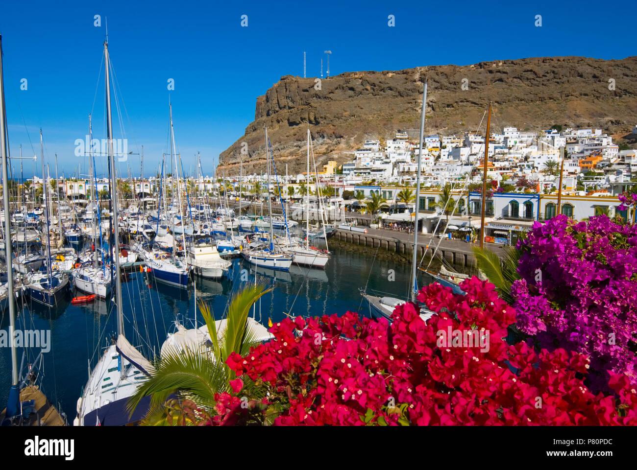 Blick über Bougainvillea und Marina von Puerto de Mogan auf der Kanarischen Insel Gran Canaria. Stockbild